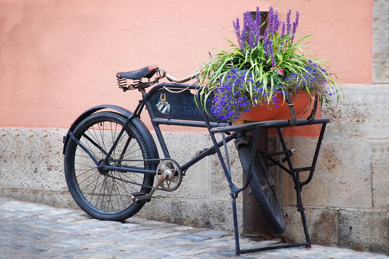 Still Life, Heidelberg