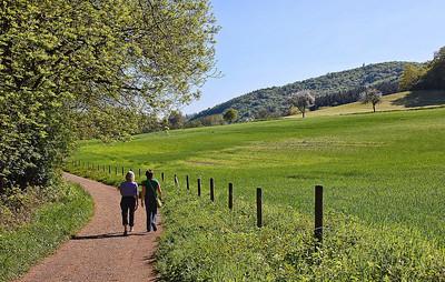 germany-walking-path