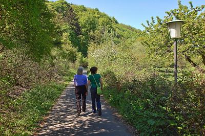 people-walking-path