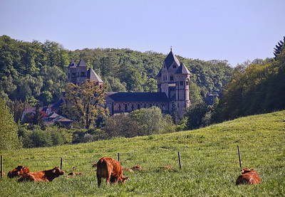 cows-grazing-castle-2