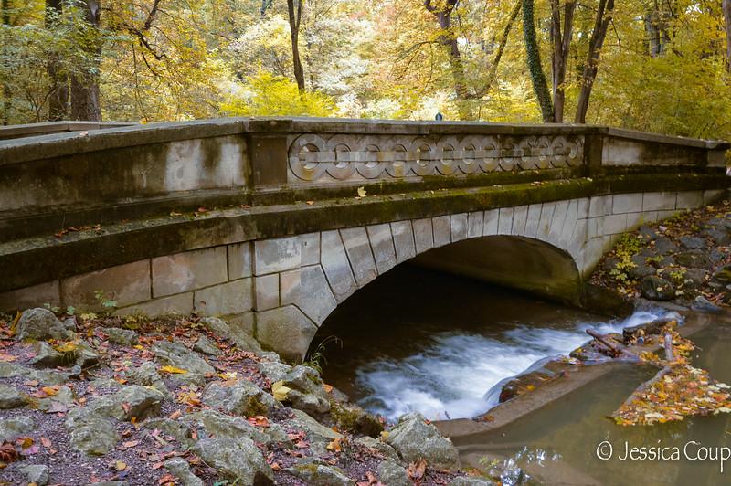 Munich Park in the Fall