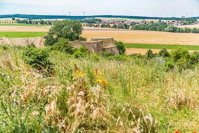 Rheinhessen-Rheinland-Pfalz_6377
