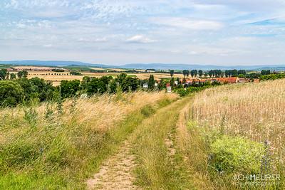 Rheinhessen-Rheinland-Pfalz_6381