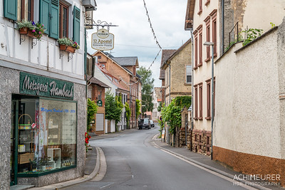 Rheinhessen-Rheinland-Pfalz_6053