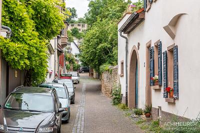 Rheinhessen-Rheinland-Pfalz_6027