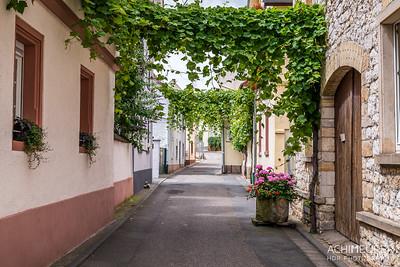 Rheinhessen-Rheinland-Pfalz_6039