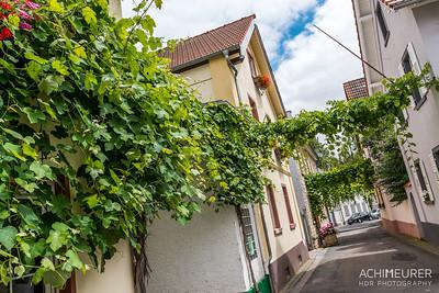 Rheinhessen-Rheinland-Pfalz_6044