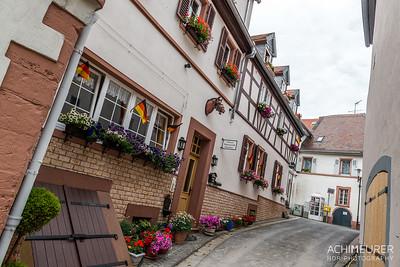 Rheinhessen-Rheinland-Pfalz_6025