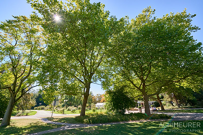 Der Westfalenpark in Dortmund