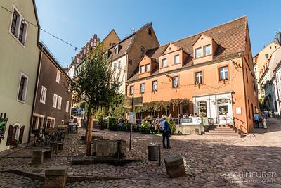 Sachsen-Elbland_2951
