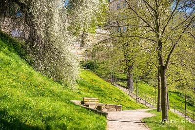 Saechsische-Schweiz-Pirna-Stadt-Ansichten_8848