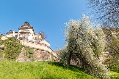 Saechsische-Schweiz-Pirna-Stadt-Ansichten_8847
