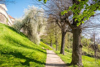 Saechsische-Schweiz-Pirna-Stadt-Ansichten_8846