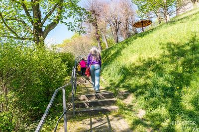 Saechsische-Schweiz-Pirna-Stadt-Ansichten_8840