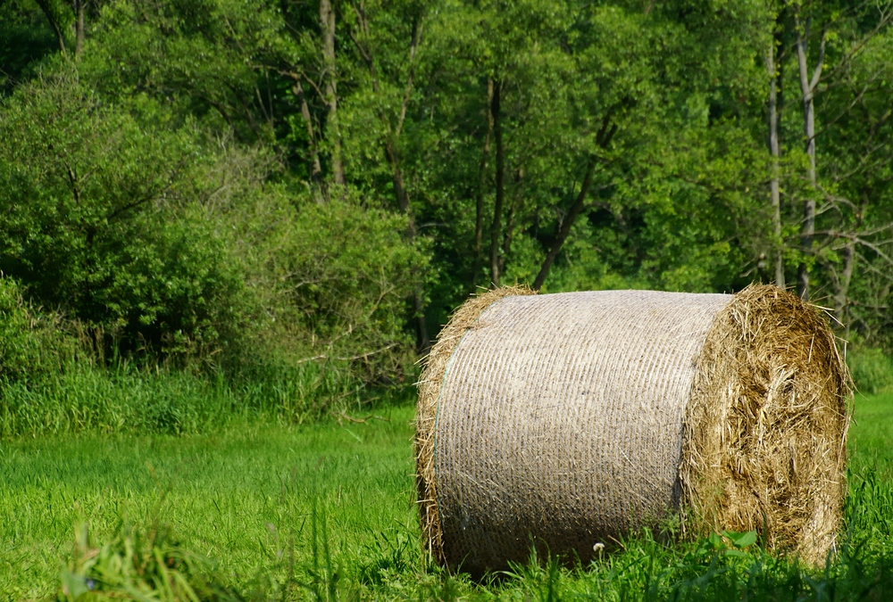 A barrel of hay located in the Spree Forest, Germany