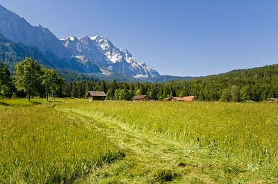 Richards___A Southern Bavarian Field near the Zugspitze