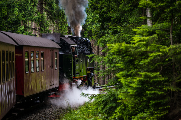 Brockenbahn - Harz National Park, Germany