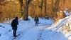 Schneewanderung zwischen Weiherhof und Cadolzburg