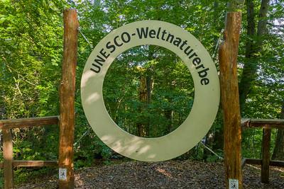 Buchenwälder im NP Jasmund, UNESCO Weltnaturerbe, Nationalpark-Zentrum Königsstuhl