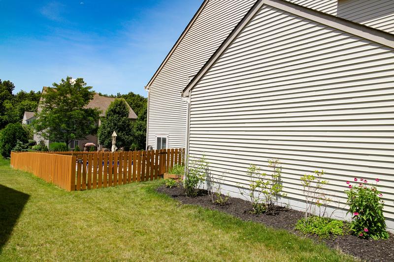 backyard (15).jpg