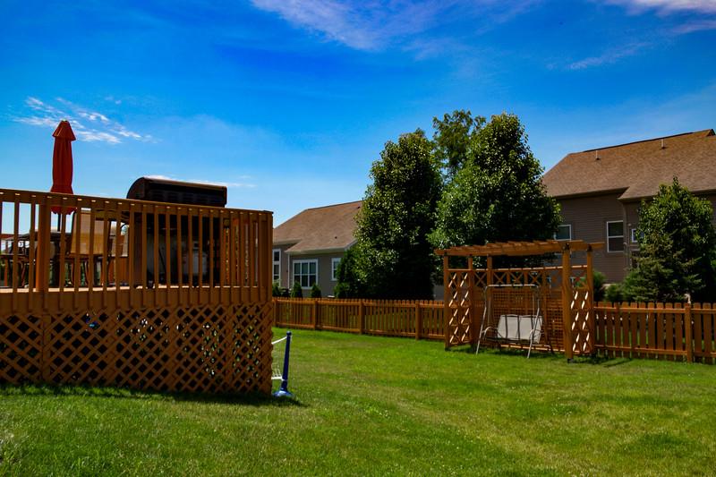 backyard (8).jpg