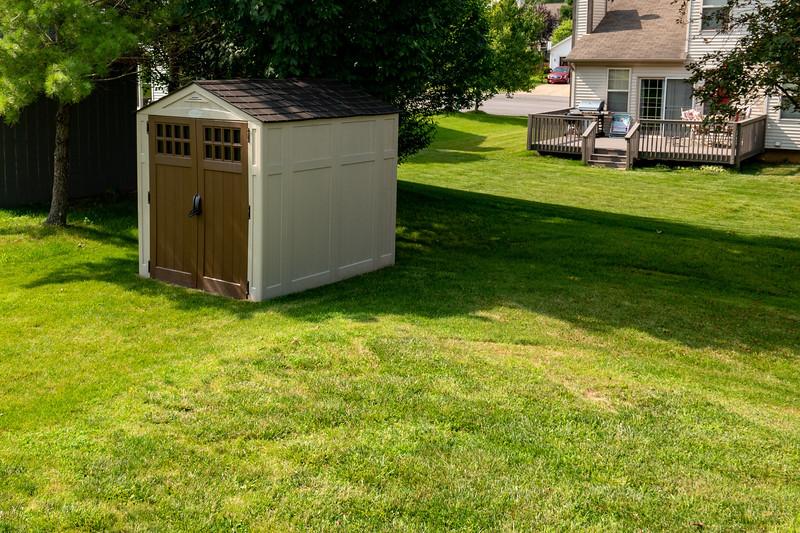 backyard (11).jpg