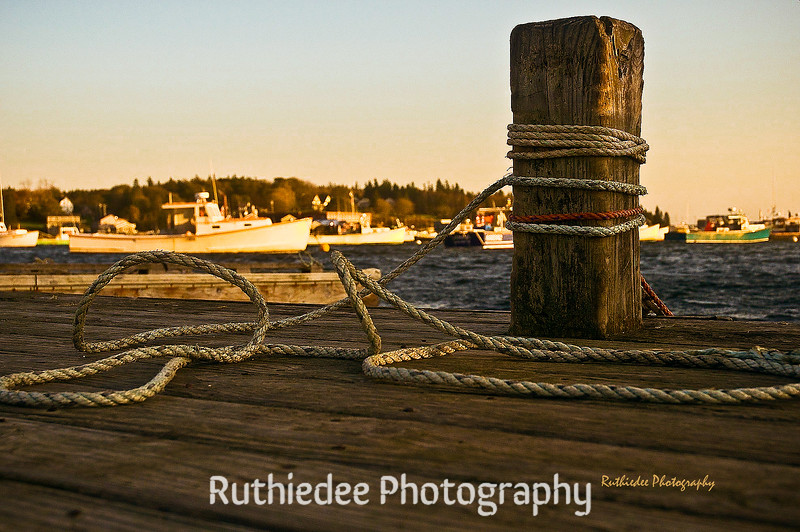 In the harbor...
