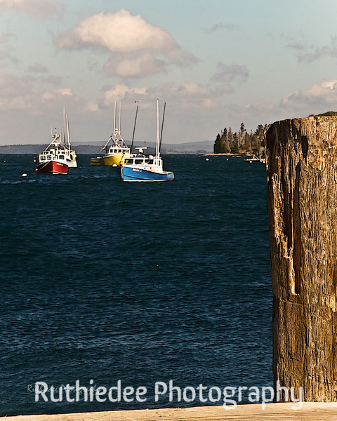 Fishing boats in the harbor...