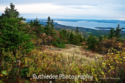 From Cadilac Mountain looking southeast...