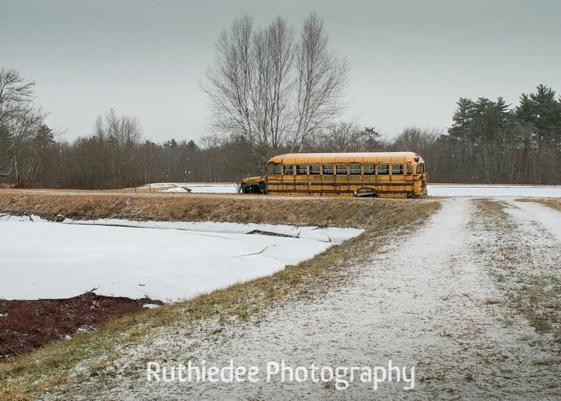 old bus in a bog 33_1.jpg