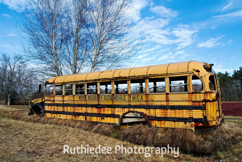 old bus in a bog 3.jpg