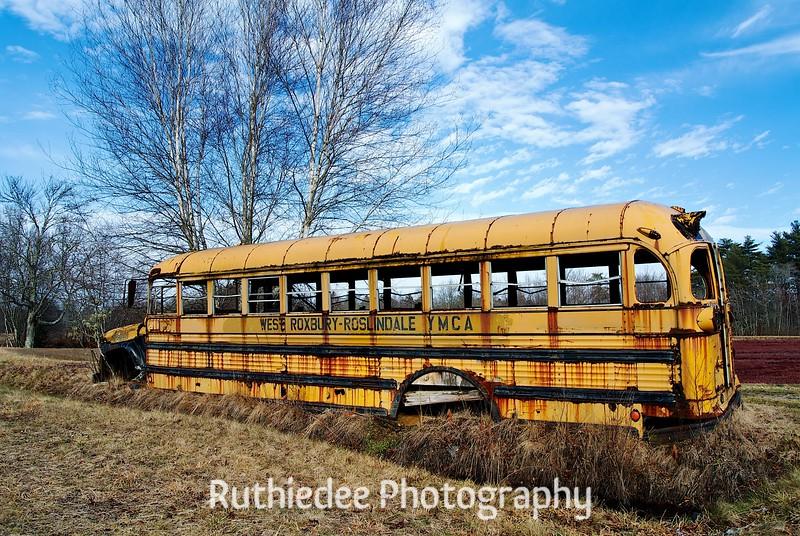 old bus in a bog 3.jpg