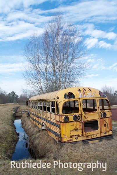old bus in a bog 12.jpg