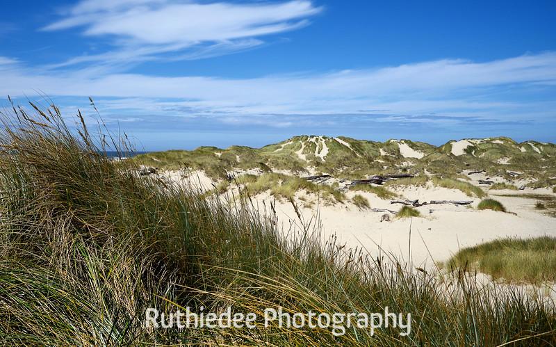 ski slope dunes 2.jpg