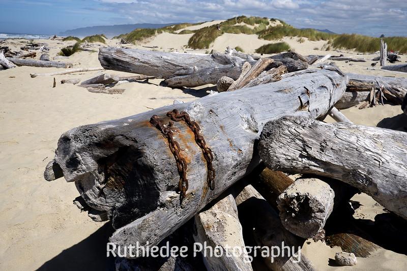 dune logs chain.jpg