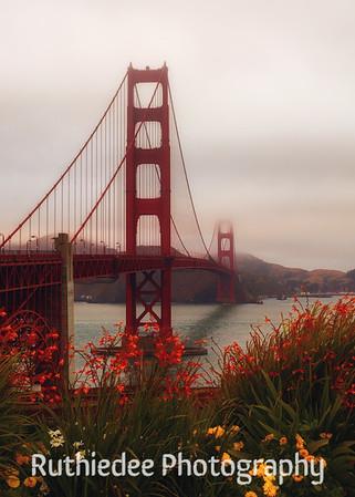 Golden Gate garden...