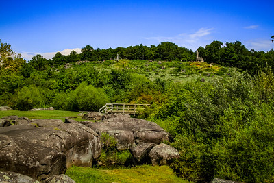 Plum Run and Little Round Top