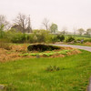 The Rose Farm from DeTrobriand Avenue