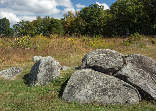 The Wheatfield: it was the scene of hand-to-hand fighting by Union and Confederate troops below Little Round Top.  Parts of the 20 acres were so covered by the dead that it was said you could walk across the field without touching ground.