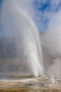 Aurum Geyser, Upper Geyser Basin
