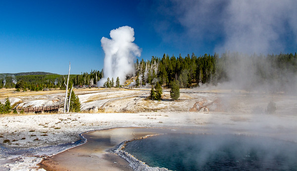 Crested Pool with Grand Geyser in Eruption