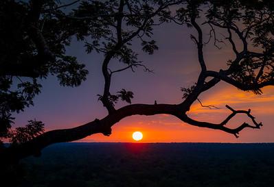 Mole Nat. Park Sunset