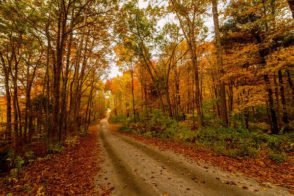 Tucker Hollow Road