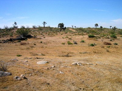 Area where the XB-70 pancaked into the ground after falling strait down in a flat spin