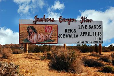 Desert Beauty Jawbone Station Mojave Desert CA