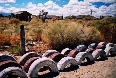 Ed's Tire Garden