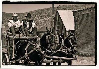 The Mule Cart