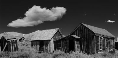 Bodie in Black & White