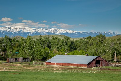 Old Barn backed by the Beartooth Mountains, Absarokee, Montana