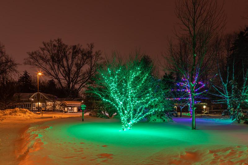 Asbury Woods 026 December 26, 2020
